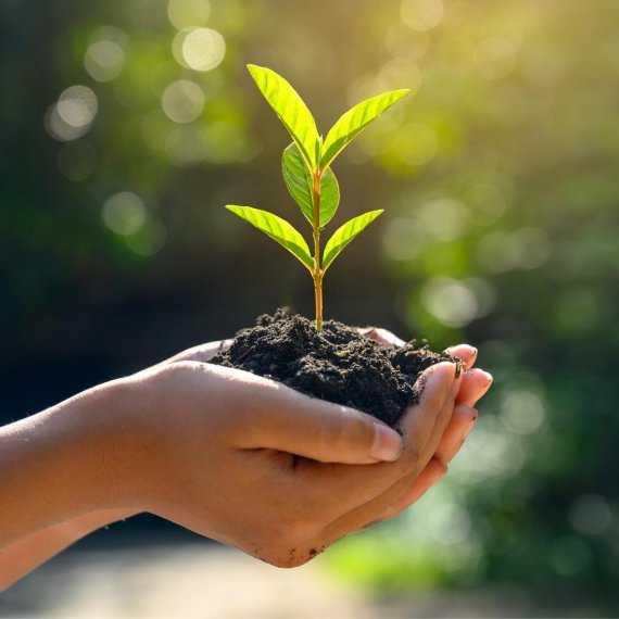 NZN: Grow Smarter