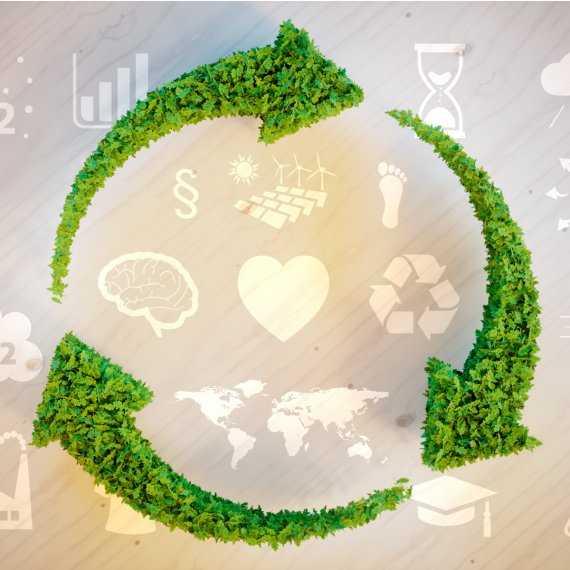 circular economy N8 net zero north