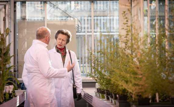 princess anne bioyork launch
